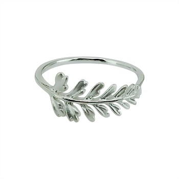 New Zealand Hen & Chicken Fern Ring
